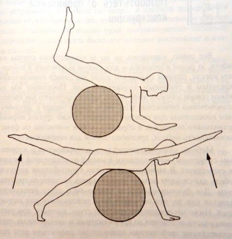 Альтернатива сидению на стуле
